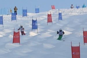 Лыжники на могульной трассе