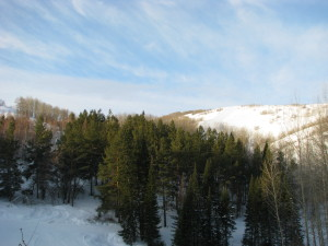 Алтайские Альпы